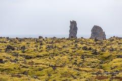 Gisement de lave avec de la mousse verte luxuriante et les falaises rocailleuses sur le bord de la mer photo stock