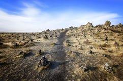 Gisement de lave de l'Islande photo stock