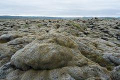 Gisement de lave en Islande Photographie stock libre de droits