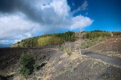 Gisement de lave refroidi et forêt mélangée automnale en Etna Park photos libres de droits