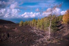 Gisement de lave refroidi et forêt mélangée automnale en Etna Park photo stock