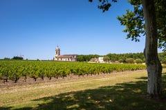 Gisement de raisin et vieille église derrière. Paysage dans la région de Bordeaux images libres de droits