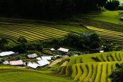 Gisement de riz dans la ville montagneuse Images stock