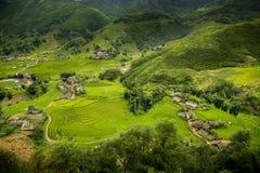 Gisement de riz de terrasse dans du nord du Vietnam Images libres de droits