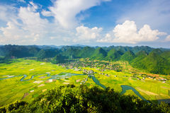 Gisement de riz en vallée en Bac Son, Vietnam Images stock