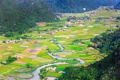Gisement de riz en vallée en Bac Son, Vietnam Photographie stock
