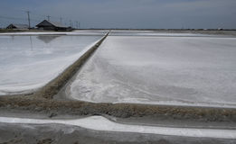 Gisement de sel Photos libres de droits