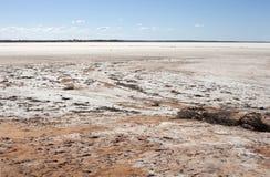Gisement de sel dans le désert Images stock