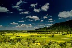 gisement et montagne de riz Photo libre de droits