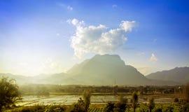 gisement et montagne de riz Image stock
