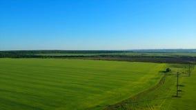 Gisement vert illimité de riz contre le village éloigné par les collines imagées banque de vidéos