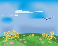 Gisements de fleurs de source Illustration Stock