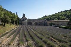 Gisements de lavande dans l'abbaye de Senanque photographie stock