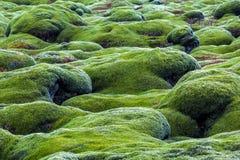 Gisements de lave verts Images libres de droits