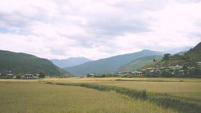 Gisements de riz au Bhutan Photographie stock libre de droits