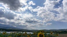 Gisements Kestel Brousse Turquie de tournesols de rayons de soleil de nuages image stock