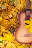 Gitaar in de herfstbladeren Royalty-vrije Stock Fotografie