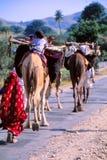 Gitanos en Jaisalmer, la India Imágenes de archivo libres de regalías
