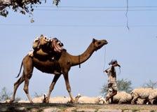 Gitanos en Jaisalmer, la India Imagenes de archivo