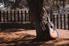 gitara na drzewnym cieniu przy lasową jesieni scenerią obraz royalty free