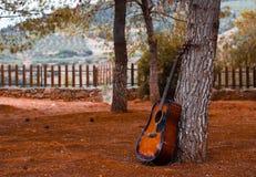 gitara outdoors kłaść na drzewnych i nieżywych żółtych liściach na gr obrazy stock