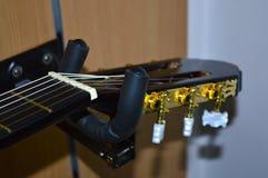 Gitara sznurki i szyja fotografia royalty free