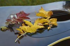 Gitara w spadać liściach Obraz Stock