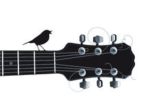 Gitarr med den sjungande fågeln Royaltyfria Bilder