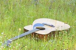 Gitarre auf dem Gebiet der wilden Blume Stockfotografie