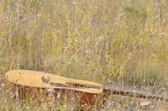 Gitarre auf dem Gebiet von wilden Blumen Lizenzfreie Stockfotografie