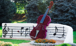 Gitarre der Chrysanthemen Lizenzfreie Stockfotografie