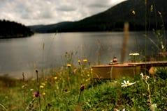 Gitarre, die im Gras durch einen Gebirgssee liegt Lizenzfreies Stockfoto