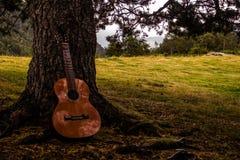 Gitarre, die unter einem Baum stillsteht lizenzfreies stockfoto
