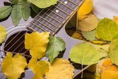 Gitarre in Herbst Blättern Stockbilder