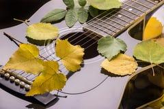 Gitarre in Herbst Blättern Stockbild