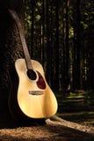 Gitarre im Wald stockfoto