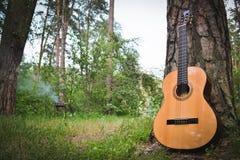 Gitarre nahe einem Baum im Wald auf dem Hintergrund des Grills Stockbild