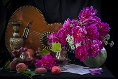 Gitarre und Anmerkungen lizenzfreies stockfoto