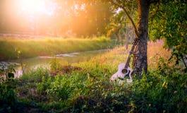 Gitarren förläggas under trädet arkivbilder