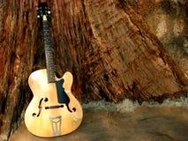 Gitarren-Holz stockbilder