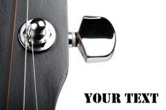 gitarren strings tensoren Arkivbilder