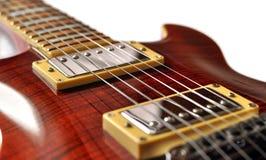 Gitarrenmahagonibaum Lizenzfreie Stockfotos