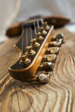 Gitarrenspindelkasten Stockbilder