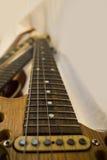 Gitarrhals och fretboard royaltyfria foton