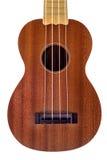 Gitarrnärbild Arkivbild