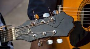 Gitarrrader med att trimma knoppar Fotografering för Bildbyråer
