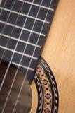 gitarrspanjor royaltyfri fotografi