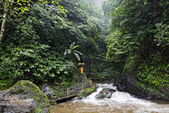 Gitgit Waterfall Royalty Free Stock Images