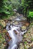 Gitgit waterfall in Bali Royalty Free Stock Image