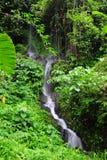 Gitgit waterfall in Bali Stock Image